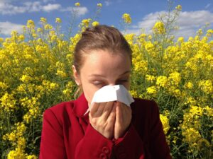 Allergi